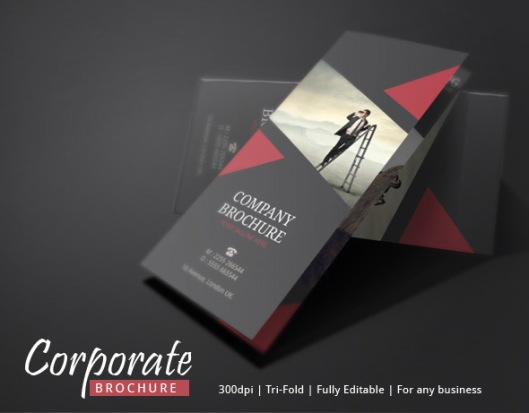best brochure designs - best business brochures newsletter ideas