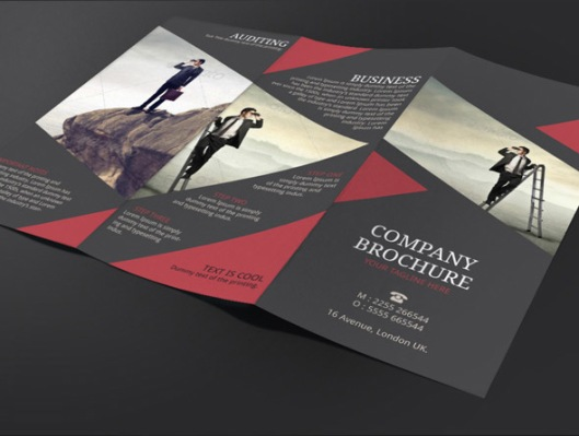 Brochure Design  Newsletter Ideas