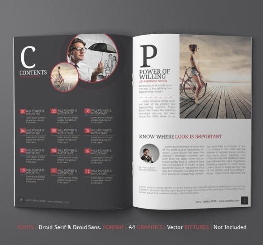Newsletter Template Design Ideas