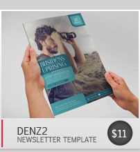 Switz Newsletter Template